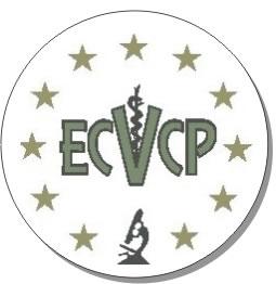 ecvcp.jpg